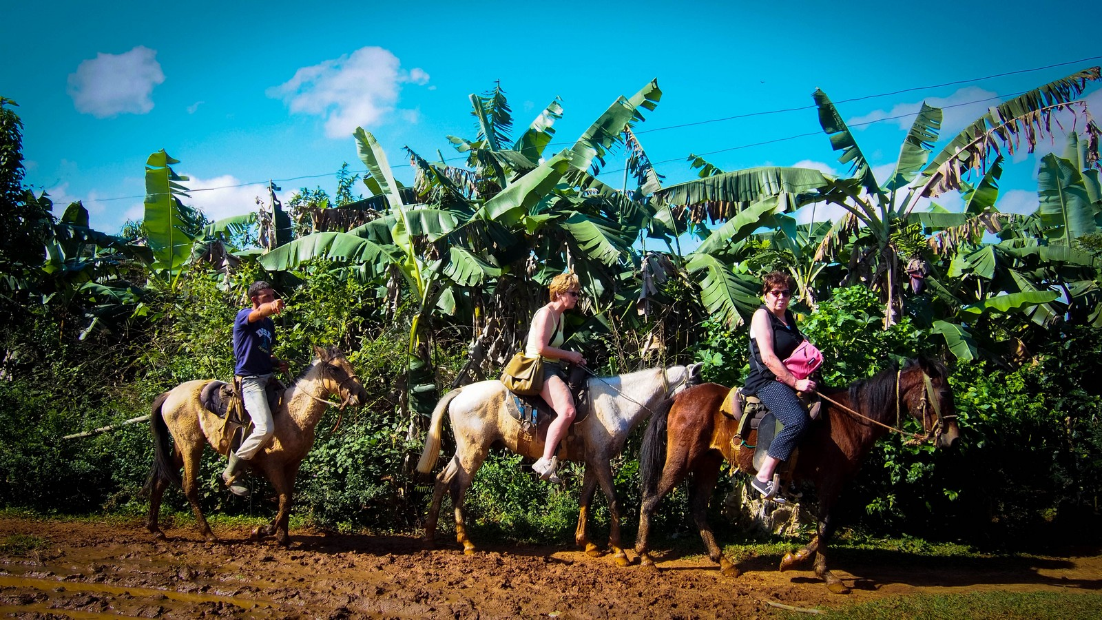 Viñales - Horse riding